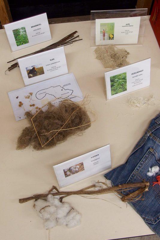fibres for paper