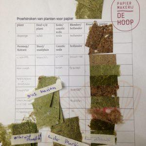 vegetal paper experiments