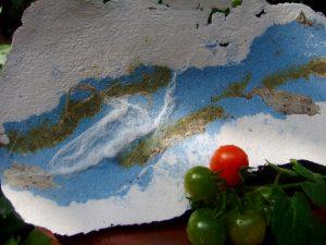 papier van katoen en waterplanten
